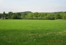 Oostkerke-Damme, 2,2 ha weide te koop, pachtvrij