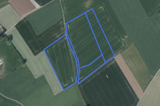 Landbouwgrond te Brakel – Perreveld