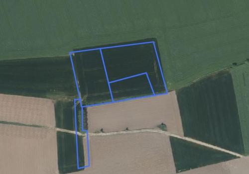 Landbouwgrond te Brakel – Wolvenweg