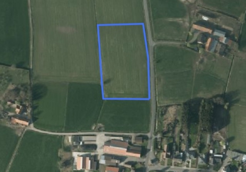 Landbouwgrond te Belsele