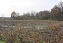 Landbouwgrond of weiland met een oppervlakte van 45 a 86 ca