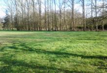 Mooi gelegen weiland in Langdorp.