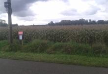 Landbouwgrond, Overslagdijk, (De Venne) te Wachtebeke, 83a24ca.