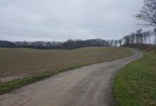 Landbouwgrond in Bertem.