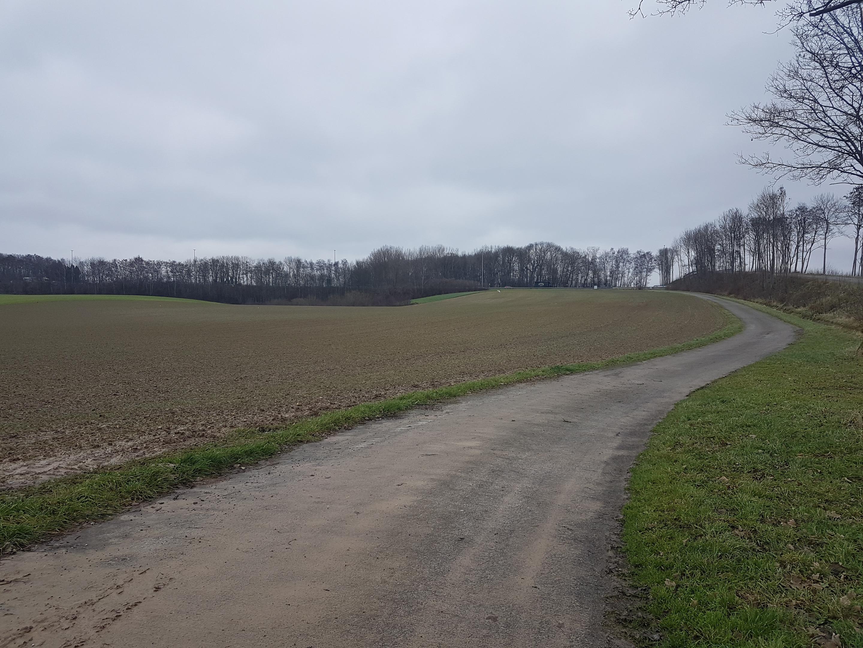 Landbouwgrond in bertem landbouwgrond te koop for Landbouwgrond te koop oost vlaanderen