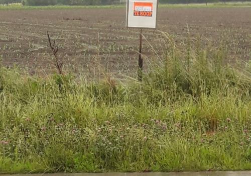 Landbouwgrond te Puurs