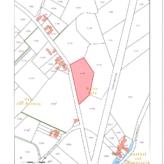 Perenplantage Kortessem/Wintershoven 6ha14a81ca