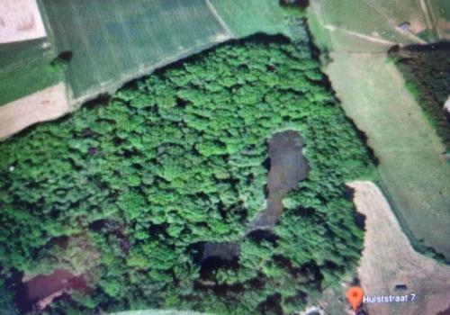 Bos met vijver te Bekkevoort (2ha49a)