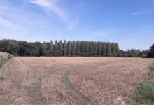 Mooi perceel landbouwgrond in Kampenhout.