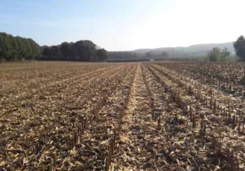 Akker van ruim 2 hectare te koop in Holsbeek