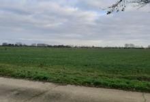 akkerland hamme-zogge/tijdelijk grasland