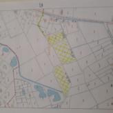 Bos in Begijnendijk te koop van 1ha70