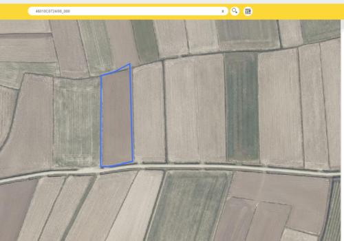 Perceel landbouwgrond te Beveren polder