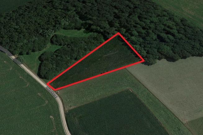 Perceel landbouwgrond te koop – 'Den Callaris Bosch' te Merchtem (Brussegem)