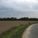 Mooi gelegen landbouwgrond te Dikkelvenne