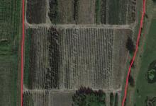 1,4ha gedraineerde landbouwgrond te koop te 2580 putte