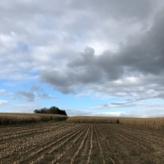 Landbouwgrond te koop Roosdaal Pamel