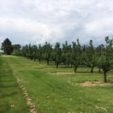 goed gelegen mooie blok landbouwgrond