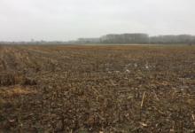 Landbouwgrond te Neerlinter