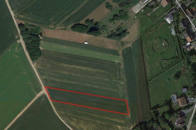 Mazenzele. Landbouwgrond te koop.