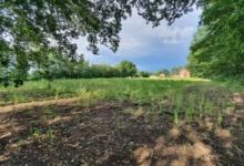 Landbouwgrond Lummen