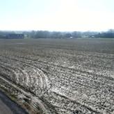 Landbouwgrond te Tielt