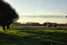 landbouwgrond en weiland
