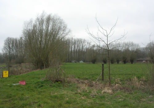 Weide/landbouwgrond te koop, 6750m² te Mespelare – Dendermonde