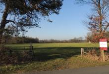Verzorgde weilanden met een totale oppervlakte van 11 hectare