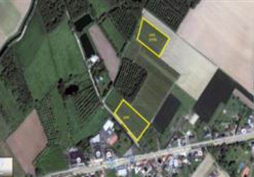 Plantage voor fruitteelt archieven landbouwgrond te for Landbouwgrond te koop oost vlaanderen