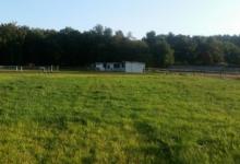 Weiland/Landbouwgrond met 5 paardenstallen te koop in Tessenderlo