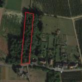 Landbouwgrond te Nieuwrode (Holsbeek)