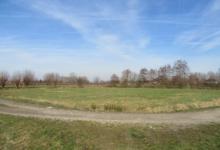 Weideland gelegen aan de Veldmeersstraat in Laarne