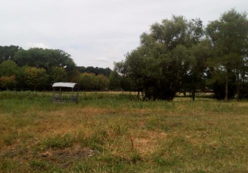 Landbouwgrond te koop te Belzele, gebruikt als weide in stil gelegen beschermde omgeving!