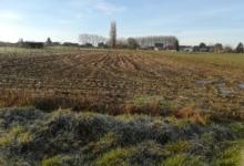 Uitstekende landbouwgrond te Burst
