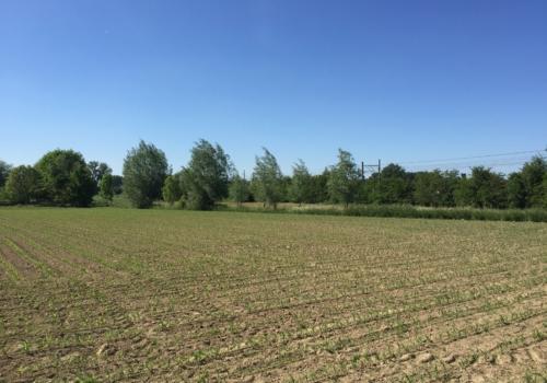 Landbouwgronden landbouwgrond te kooplandbouwgrond te for Landbouwgrond te koop