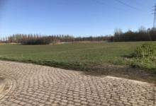 Vruchtbare goed gelegen landbouwgrond Wijgmaal Leuven