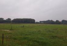 Landbouwgrond/Weide Te Kobbegem 1Ha