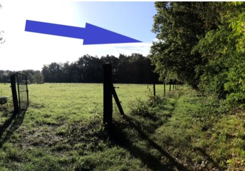 Bos in Heist-op-den-Berg – 9a47