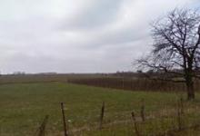 Centraal gelegen akkerland in Gingelom Sectie Buvingen in de Wittekens