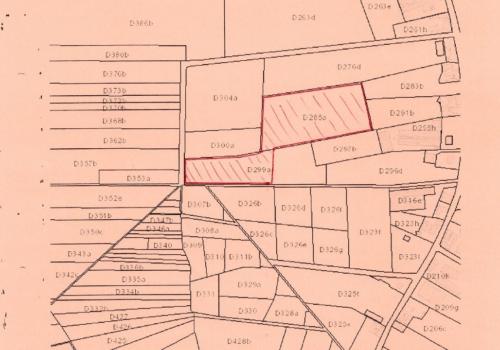3,64 ha goede landbouwgrond in Loenhout