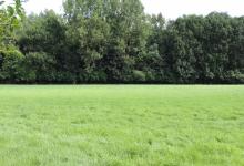 ASSE (Mollem), weiland van ± 2,5 hectare, verpacht