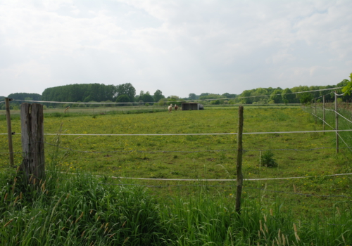 Rustig gelegen landbouwgrond te Heist-op-den-Berg.