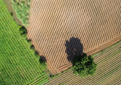 Waardevol agrarisch gebied in Brusselse rand