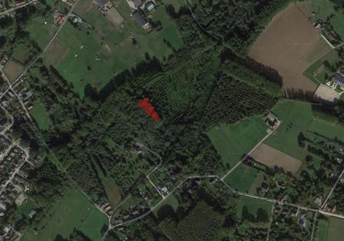 Asse, omgeving Louwijn/Morette… een perceel bosgrond