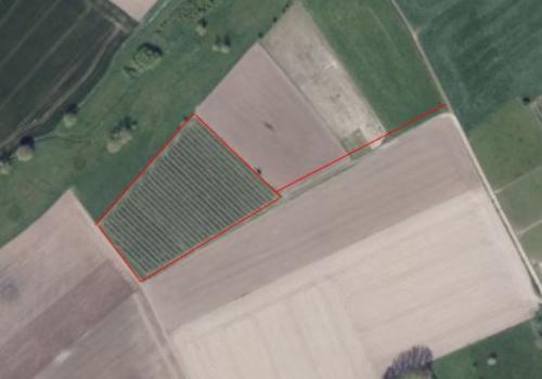 Rustig gelegen landbouwgrond in Geetbets (Nieuwdorp/ Maneschijn)