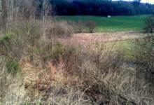 landbouwgrond 68 are vrij van pacht met waterloop Ardennen