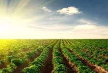 Evergem, 5,73 ha akkerland, vrij van pacht