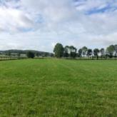 2,9 hectare weides aan de voet van de Koppenberg