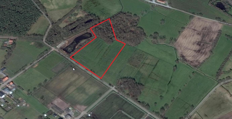 Weiland in heppen leopoldsburglandbouwgrond te koop for Weiland te huur
